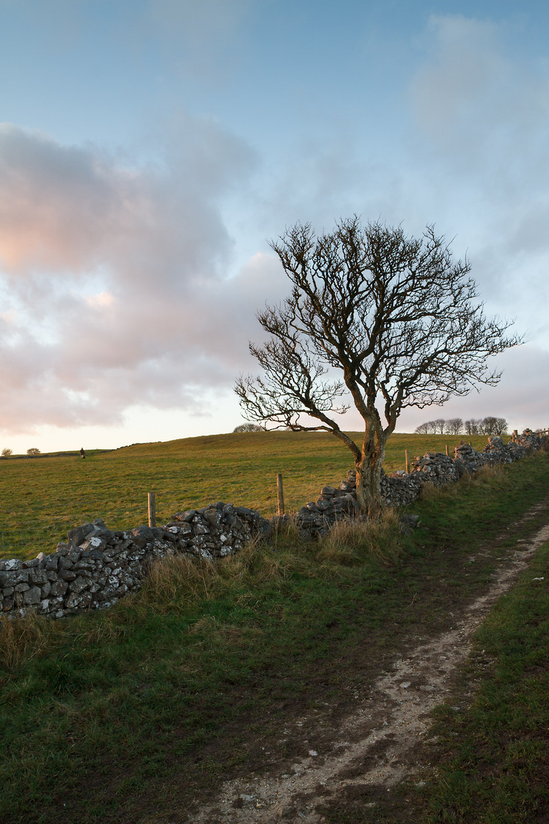 Limestone landscape